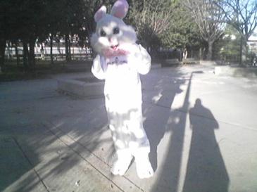 rush-hour-bunny.jpg